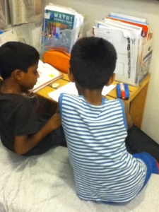 Brothers studying together