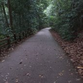 Walking backwards upwards on the steep slope